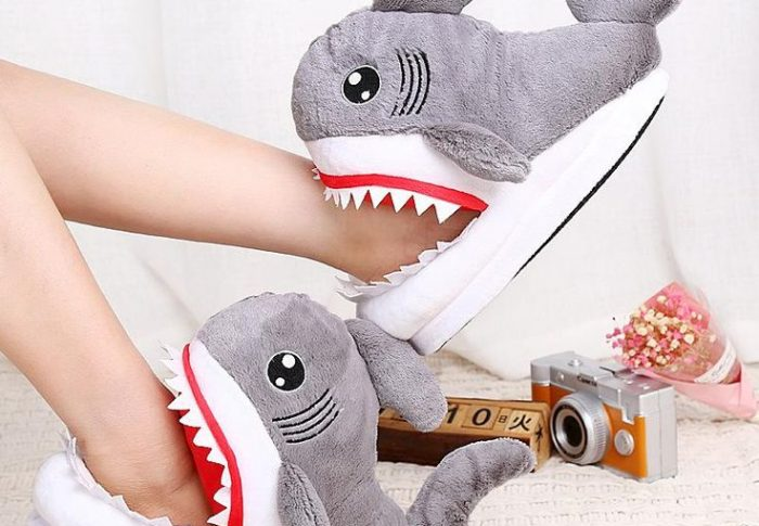 Cartoon Cotton Slippers Which Pair Do You Like?